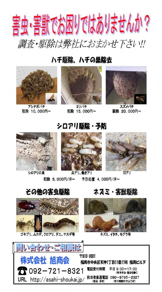 害虫害獣駆除チラシ